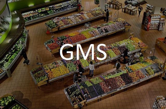 Ridel Energy Recuperateur de chaleur pour la GMS